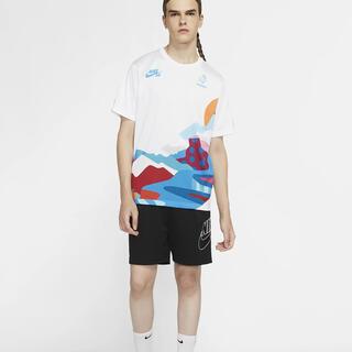 ナイキ(NIKE)のNike SB フランス ジャージー parra スケートボード オリンピック(Tシャツ/カットソー(半袖/袖なし))