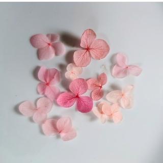 【新品未使用】押し花 紫陽花 ピンク系(ドライフラワー)