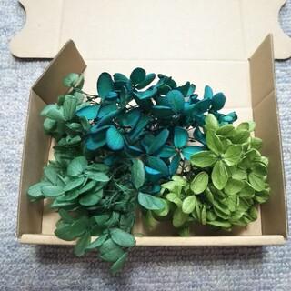 ラスト‼️【特価】セールアジサイ 3色 グリーン 5g(プリザーブドフラワー)