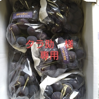 タラ助様 専用 カタログ 紫玉「送料」600円(フルーツ)