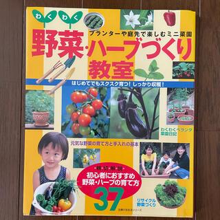 わくわく野菜・ハ-ブづくり教室 プランタ-や庭先で楽しむミニ菜園(ビジネス/経済)