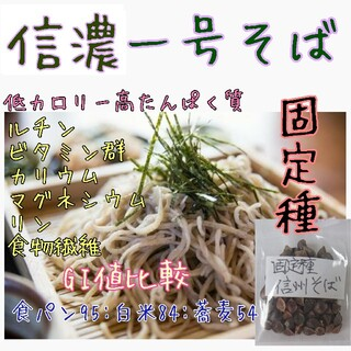 信濃一号そば 固定種 家庭菜園 種 種子 スプラウト 野菜の種 そば粉(野菜)