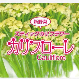 野菜のタネ カリフローレ(カリフラワー) イタリアの珍しい種 20個(野菜)