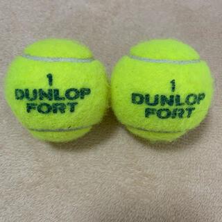 ダンロップ(DUNLOP)のダンロップフォート テニスボール(ボール)