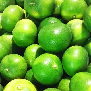 【 雨よけみかん★2キロ★ 山北みかん】温室みかん ハウスみかん フルーツ 蜜柑(フルーツ)