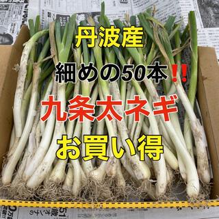 【お買い得‼️】細めの九条干しネギ苗(野菜)