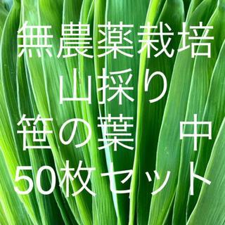 無農薬栽培 山採り 笹の葉 中サイズ 50枚セット(野菜)