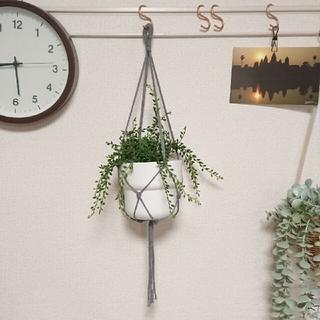 プラントハンガーシンプルNo.5  観葉植物 ハンギング(プランター)