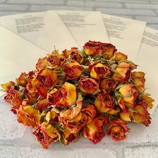 【値下げ】ドライフラワー花材 スプレーバラヘッド&洋書 0829④(ドライフラワー)