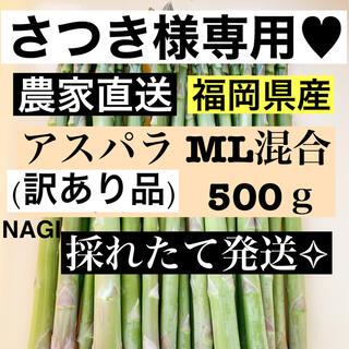 さつき様専用♥アスパラ MLサイズ(野菜)
