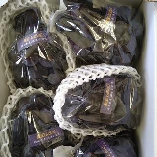 ④ ブドウ 岡山県産 紫玉2k 1箱(5〜6房入)(フルーツ)