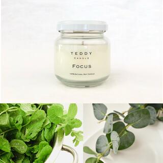 Bath & Body Works - 100%天然ユーカリ、ミント等集中力アップの香り★フォーカス★アロマキャンドル
