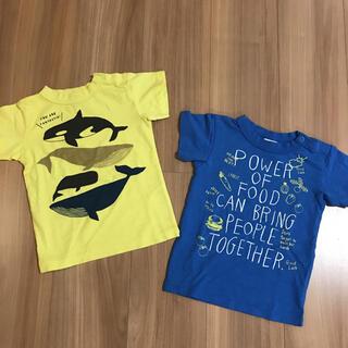 ブリーズ(BREEZE)のTシャツ 95 男の子(Tシャツ/カットソー)