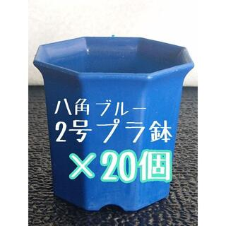 八角鉢 ◎20個◎ ブルー2号 2寸 プラ鉢 ミニ鉢 (プランター)
