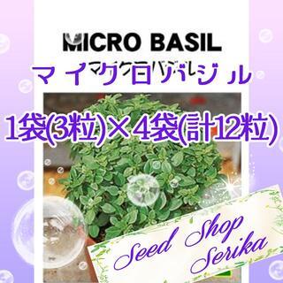 マイクロバジル 家庭菜園 野菜 ハーブ 種(その他)