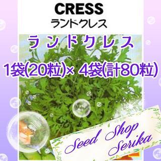 ランドクレス 家庭菜園 野菜 ハーブ 種(その他)