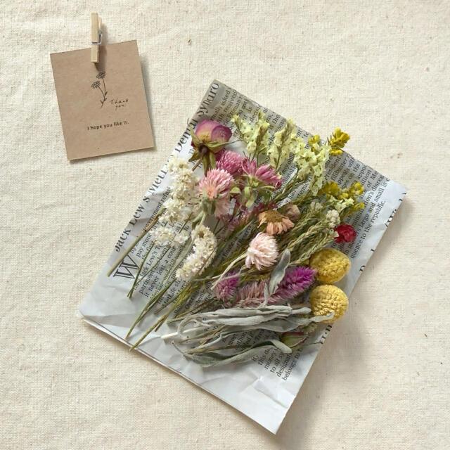 dry botanical /  #12 ドライフラワー 花材  ハンドメイド ハンドメイドのフラワー/ガーデン(ドライフラワー)の商品写真