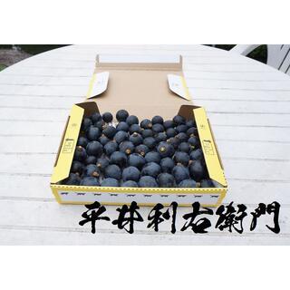 平井利右衛門の黒ぶどう(粒750g, ブラックビート)(フルーツ)