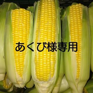 規格外とうもろこし (30本)(野菜)