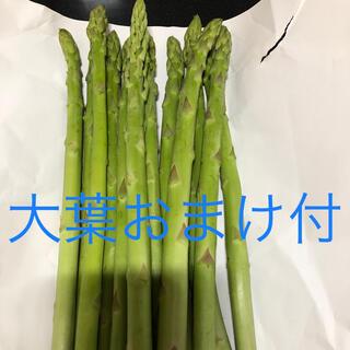 アスパラ 9.3発送(野菜)