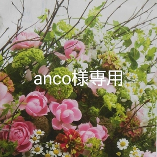 anco様専用のお品(その他)