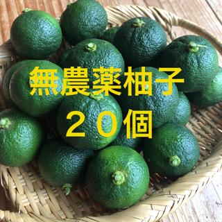 無農薬 青柚子 ゆず 20個(フルーツ)