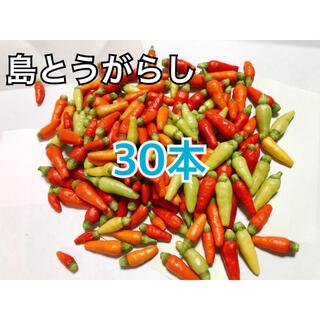 沖縄県産島とうがらし30本(野菜)