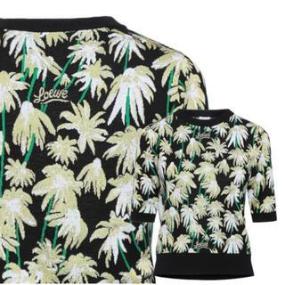 ロエベ(LOEWE)のLOEWE ニットTシャツ(Tシャツ(半袖/袖なし))