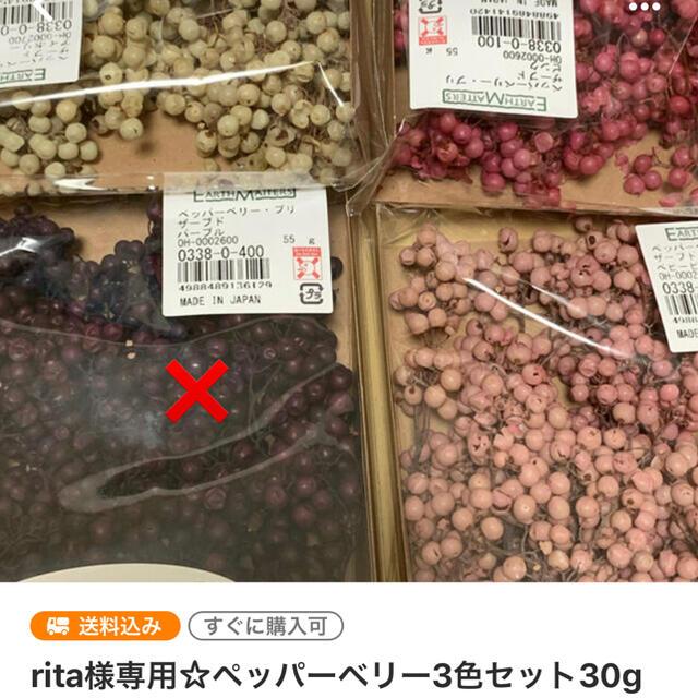 rita様専用ペッパーベリーセット☆ ハンドメイドのフラワー/ガーデン(ドライフラワー)の商品写真