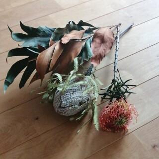 花材セット バンクシアグレビレアピンクッション(ドライフラワー)