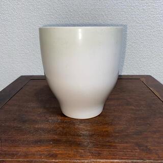 蘭鉢 植木鉢 丸鉢 白 クリーム 釉 鉢 盆栽鉢(その他)