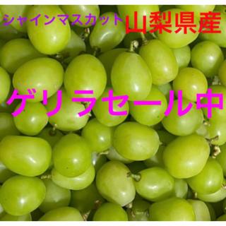 山梨県産 シャインマスカット 800g(フルーツ)