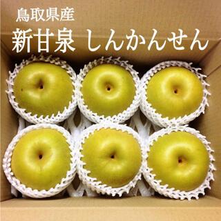 【鳥取県産】新甘泉 大玉 6玉(フルーツ)