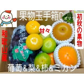 初秋の果物玉手箱D♥葡萄梨柿みかんオマケ付♥和歌山雪だるまから(フルーツ)