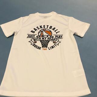 ティゴラ(TIGORA)のTシャツ(シャツ)