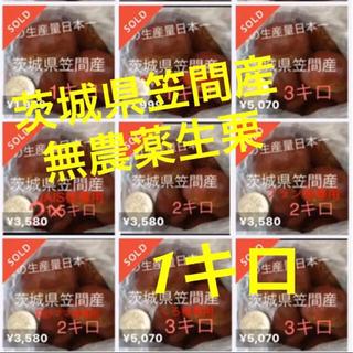 茨城県笠間産無農薬生栗☆1kg(フルーツ)