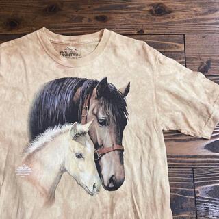 サンタモニカ(Santa Monica)のused 馬t(Tシャツ/カットソー(半袖/袖なし))