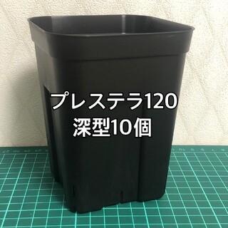 プレステラ120 深型 黒 10個(プランター)