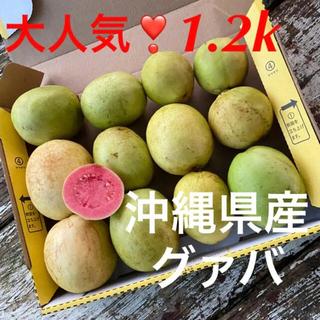 ①大人気❣️沖縄県産グァバ✨赤果実✨1.2k✅(フルーツ)