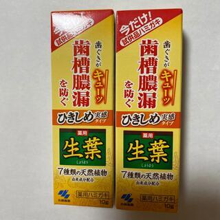 小林製薬 - 薬用生葉 試供品 10g  2個
