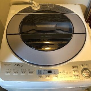SHARP - シャープ 全自動洗濯機 ES-GV8B 保証期間内