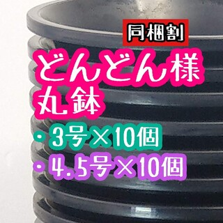 どんどん様 丸鉢(プランター)