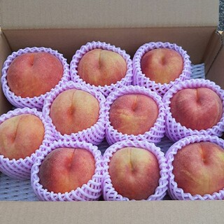 期間限定 山形産地直送 桃 3キロ『黄金桃』無袋栽培 ご家庭用(フルーツ)