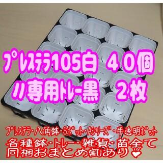 【スリット鉢】プレステラ105白40個+専用システムトレー黒2枚 プラ鉢多肉植物(プランター)