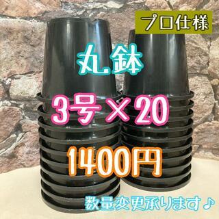 ◎20個◎ 丸鉢 3号 / 3寸 / 9cm プラ鉢 黒 ブラック(プランター)