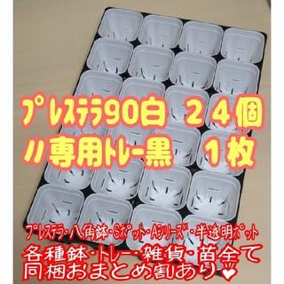 【スリット鉢】プレステラ90白24個+専用システムトレー黒1枚 プラ鉢 多肉植物(プランター)