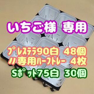 【スリット鉢】プレステラ90白48個+専用システムトレー:ハーフ4枚他プラ鉢多肉(プランター)
