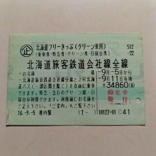 北海道フリー切符グリーン車用使用済み券1695(印刷物)