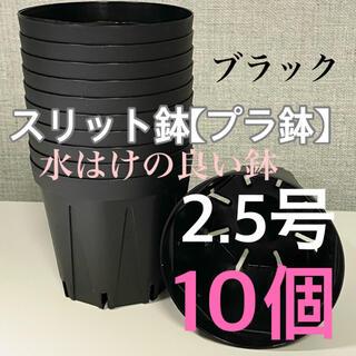 スリット鉢2.5号 直径7.5センチ 10個★KANEYA CSM-75(プランター)
