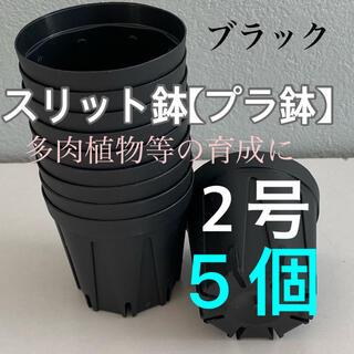スリット鉢2号 直径6センチ 5個★KANEYA CSM-60(プランター)